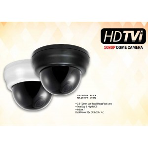 Eyemax Superdome Series Indoor Dome HD-TVI Camera TDL-204V 1080P, 2.8-12mm Dual Power Black or White Casing