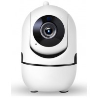 Smart home wireless Camera