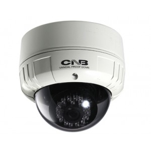 CNB LDM-20S Outdoor Dome Camera Intelligent IR 600TVL 25 Leds Vandal-Resitant