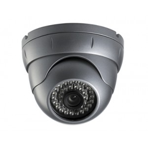 CNB LFL-20S Eyeball type Outdoor Dome IR Camera Monalisa 600 TVL Vandal-Resistant 6mm